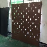 Выгравированные панели Jewllery алюминиевые с покрытием PVDF для показывать комнату