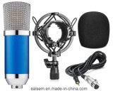 Microfoon van de Studio van het Project van de Condensator van het Diafragma van het multi-Patroon van Ealsem S-6sb de Professionele Kleine Krachtige