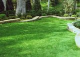 Дерновина Lamdscaping прочной синтетической травы сада искусственная (FS)