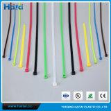 Relation étroite en plastique de fermeture éclair de serre-câble en nylon coloré