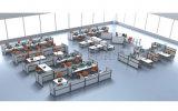 대중적인 분할은 디자인한다 현대 사무실 6 사람 컴퓨터 워크 스테이션 (SZ-WS530)를