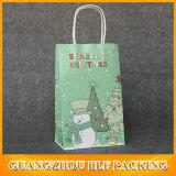 Bolsa de papel reciclable pintada del diseño