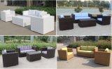 Sofa en osier extérieur synthétique d'hôtel de meubles modernes de rotin (4302)