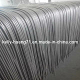 Baixo Price Stainless Steel Metal Flex Hose com Braid Layer