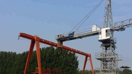 CE ISO Qtz80 Tc6010 6ton 建設用トップキットタワークレーン 機械
