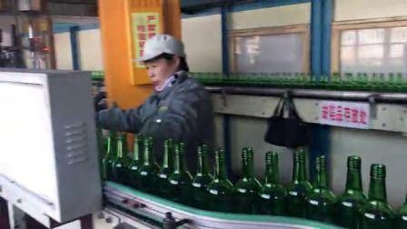 750 ml di bottiglia di vino di vetro verde antico/bottiglia di vino Bordeaux/vino di Borgogna Flacone