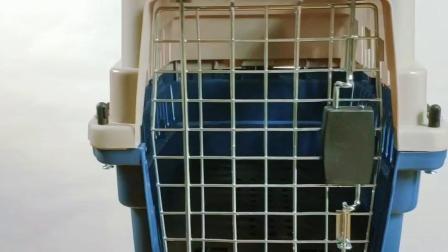 На складе Pet каркас пластиковый собакой питомника
