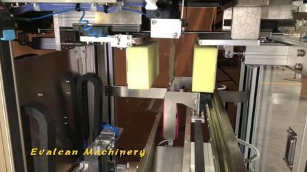 Tube de vis en acier inoxydable de comptage Sac Machine d'emballage