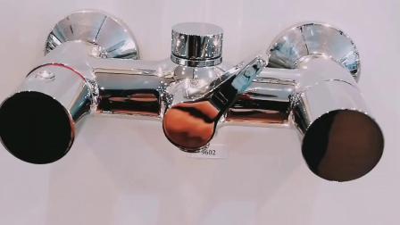 Bagno della maniglia & rubinetto d'ottone doppi dell'acquazzone