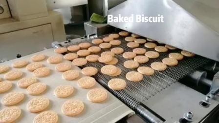 Schokolade Kekse Herstellung Maschine Biscuit Herstellung Ausrüstung Kleine Biscuit Maschine