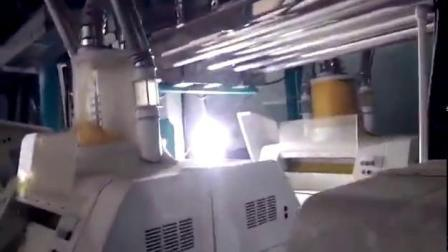 Heißer Verkauf 3tph Mais / Mais Mehl Mill Line - China Lieferant