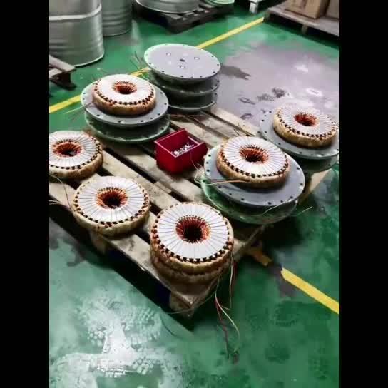 Motore a disco pompa olio trasformatore pompa olio centrifuga elettrica 6bp80-5/2,2V