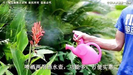 1L Mini-Lado a pressão de disparo do Pulverizador do vaso para uso doméstico (SX-2064)