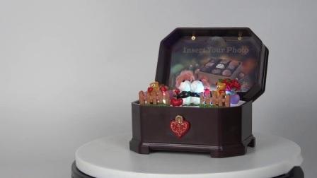 De in het groot OEM en ODM Doosvormige Plastic Aangepaste Muziekdoos Op batterijen van Juwelen voor Verkoop