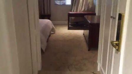 고급 패브릭으로 감싼 중국 호텔 침실 가구 세트