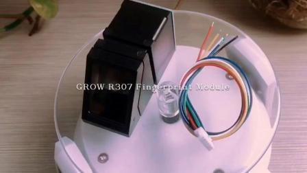 Grandir R307 Cheap UART USB Module optique à la lumière bleue d'empreintes digitales
