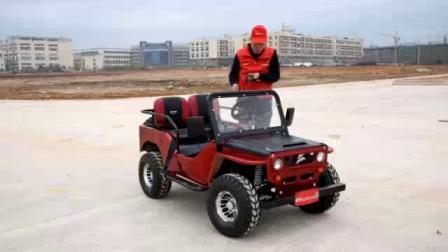 Mini eléctrico al por mayor para la venta de China Willys