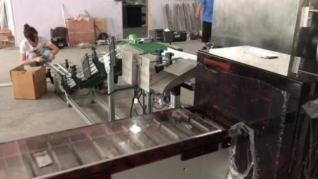 Bouteille de haute vitesse automatique Blister pharmaceutique/aliments/Dessert/mouchoir en papier/poudre/Paquet cartoning machine boîte carton Cartoner machine de conditionnement d'emballage