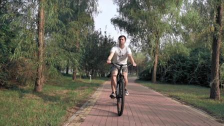 27.5 インチマウンテンバイク 29 アルミニウム合金自転車大人用マウンテンバイク 21 速