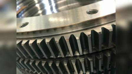 Unterstützung für Industrieroboter 111.25.500 Special China Drehlager