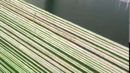 Het hoogste Sterkere Groene Onder ogen gezien Triplex van het Gezicht van de Kleur Plastic Film met de Kern van de Populier of de Kern van de Mengeling