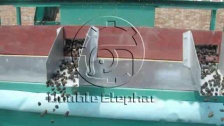 1-3t/H Palm Kernel Oil Presser Oil Extraction Machine Palm Kernel Ölverarbeitung Pressen ganze Linie Maschinen in Afrika