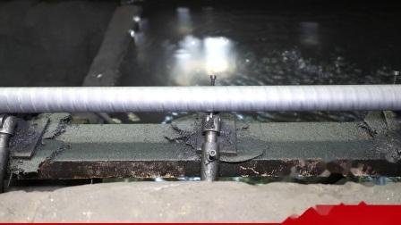 좋은 품질 Gcr15 방위 강철 로드 샤프트 (WCS SFC 시리즈 16mm)