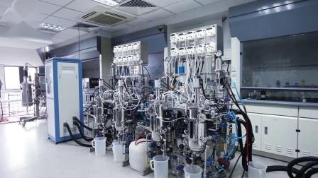 Qualità superiore Steroidi materie prime GSK-516 Endurobol USA magazzino Bulk Supply CAS: 317318-70-0