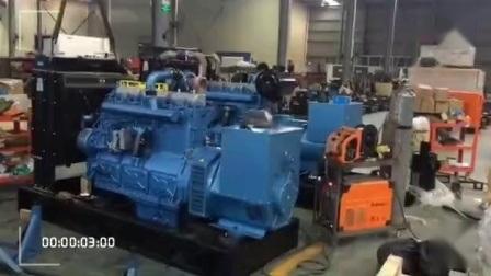 Générateur de puissance (Cummins série 550kVA)