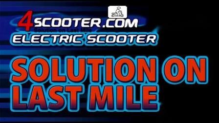 최신 EEC 60V20ah Citycoco 전기 지방 휠 Citycoco 스쿠터
