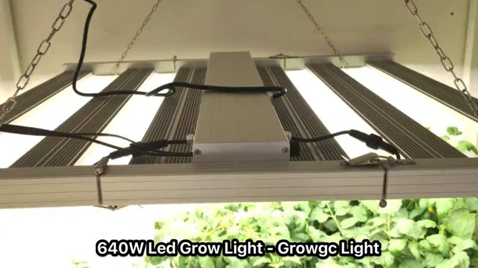 640W Infoor T8/A8 LED バー Quantum UV IR Grow 防水 工場販売用ライト 100W フルスペクトル