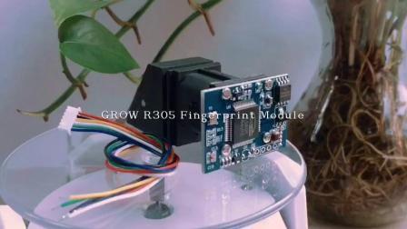 Grandir R305 Hot Sale DC 4.2-6.0v Module d'empreintes digitales optique