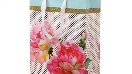 Bolsa de papel personalizados / Bolsa de papel decorativo / Diseño bolsa de papel