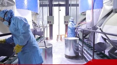 17% de alta densidade de cerâmica Incert Bola mídia Suporte Transportadora Catalyst 25mm para o Setor petroquímico
