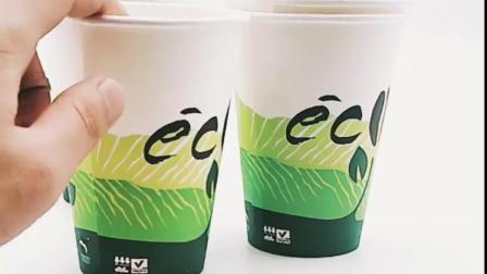 Van Eco de Vriendschappelijke Bioegradable Beschikbare Hete van de Drank Koppen van het pla- Document