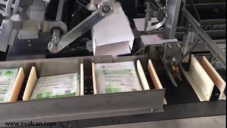 Lavage à haute vitesse automatique intime Mahicne Cartoning Package