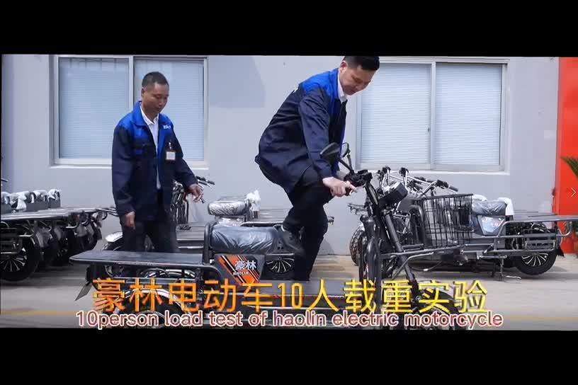 2021 대중적인 싼 큰 선적 화물 중국에서 전기 기관자전차 자전거