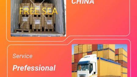 DDP 배송 회사 아마존 FBA 운송 업체 중국 - 일본/미국/영국/AU/캐나다
