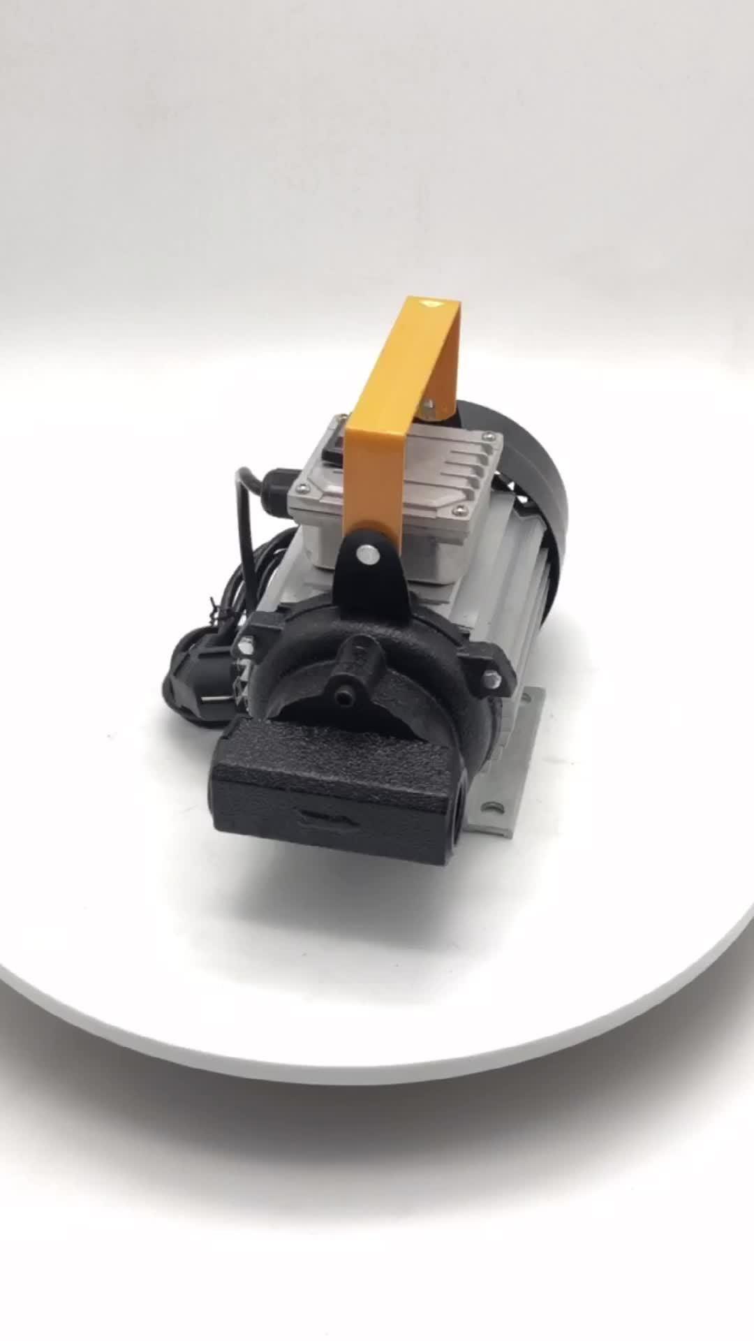 220V 750Wの電気潤滑油ポンプギヤ油ポンプ