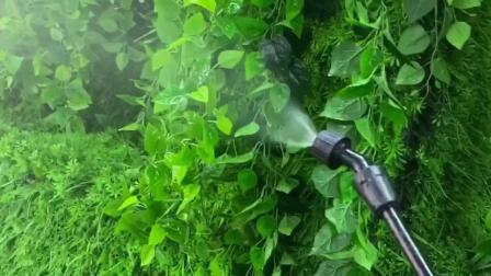 20L mochila/Manual mochila manualmente uma pressão do cilindro de latão pulverizador agrícola (SX-LC20V)
