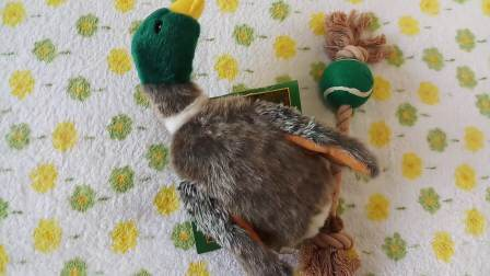 Amazon Heißer Verkauf Hundespielzeug Plüsch Zubehör Gefüllte Produktversorgung Haustier Spielzeug (Versorgung Kauen Biss Squeaker)