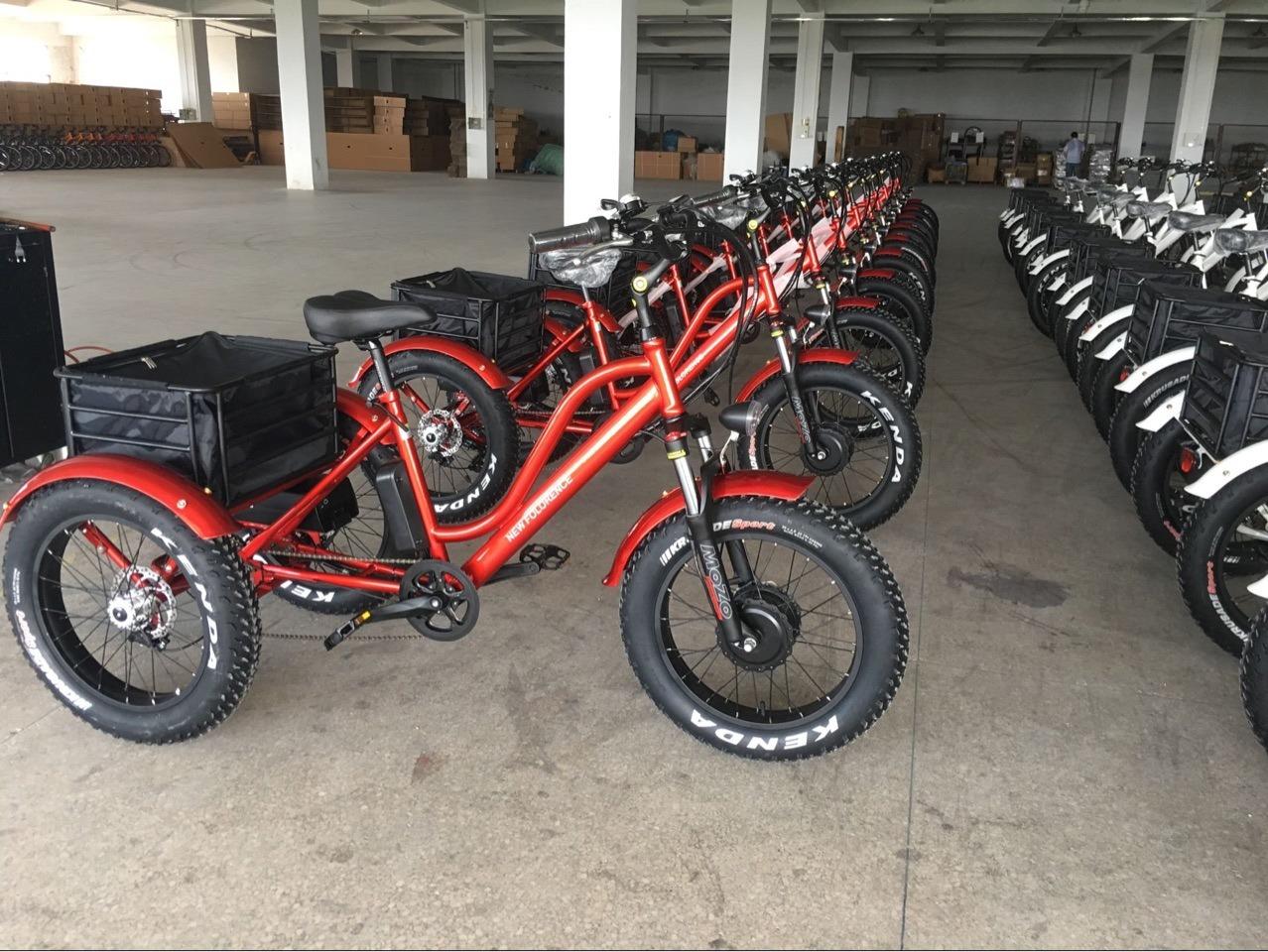 Das 3 Rad-elektrische Dreirad mit 350With500W /750wlithium Batterie-Vorderseite-Motor für transportieren Ladungen