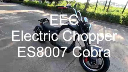 Best Buy Long haut de gamme de vitesse Scooter Citycoco 2000W