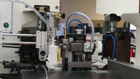 Draht-Verdrahtung der Serien-G5s05 grundlegende Mikrodes schalter-G5s05-Eip050-01