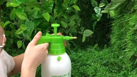 A pressão do lado de casa de jardim 1.5L/pulverizador de compressão de ar (SX-5073-3)