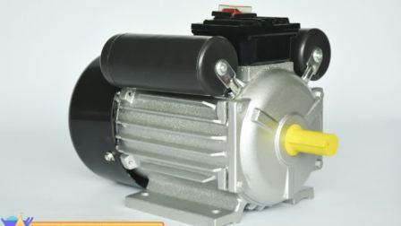 Ycl /Yc/Series Yl 0,75 KW motor CA monofásica Capacition doble de los motores eléctricos.