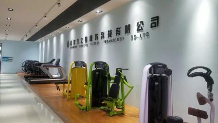 Kommerzielle Cardio-Fitness-Ausrüstung Elliptical Cross Trainer Gym-Ausrüstung