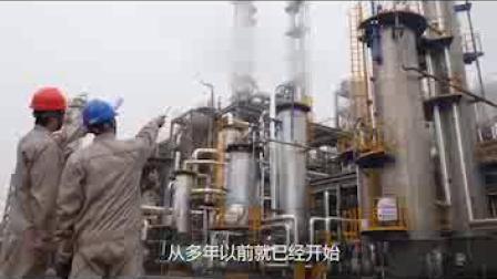 Bluesail Diisooctyl Sebacate plastificante Cold-Resistant DOS Fabricación