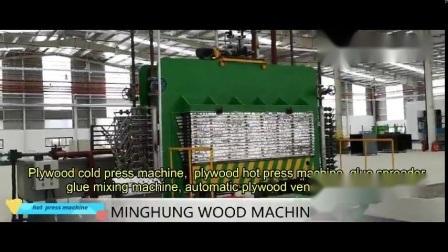 Machine van de Pers van het Triplex van de melamine de Hete voor Hydraulische Houtbewerking