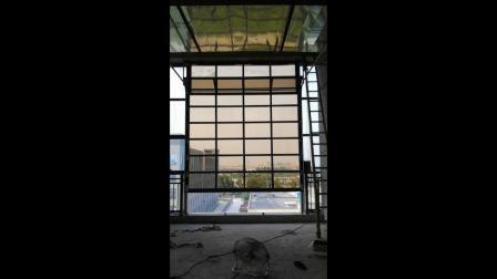 カスタマイズされたモーデン住宅完全透明絶縁自動ポリカーボネートスライドセクション オーバーヘッドリフトドアガレージドア( 4S ショップ用